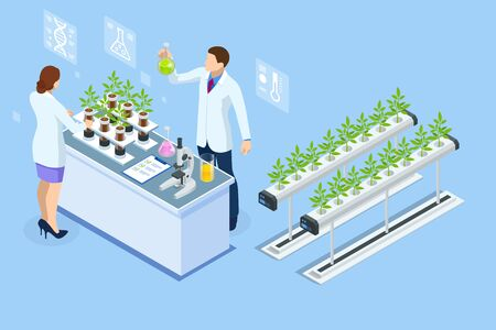 Isometric concept of laboratory exploring new methods of plant breeding and agricultural genetics. Plants growing in the test tubes Ilustracja
