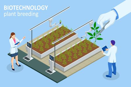 Isometric concept of laboratory exploring new methods of plant breeding and agricultural genetics. Vegetable hydroponic system, agriculture in the greenhouse organic for health food. Illustration