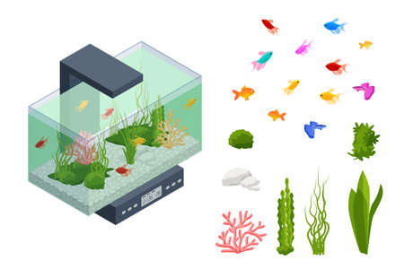 Isometric Goldfish in the Freshwater Aquarium and Set of Aquarium Underwater Elements, Fish, Corals, Green Planted Tropical, Stones Isolated on White Background.