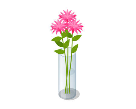 Isometric pink bouquet of flowers in transparent glass vase isolated on white background