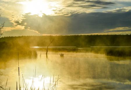sweden winter: Morning fog on a lake