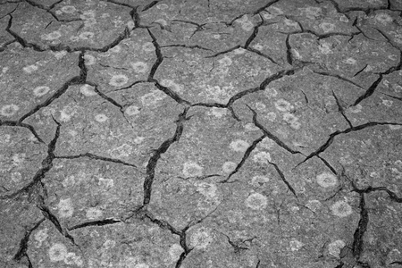 The texture of the cracking of the earth. The concept of using natural resources. Black and white image