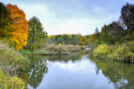 Autumn landscape on the Bank of the river with a reflection of the cloudy sky and a bright yellow maple. Background