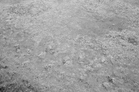 Texture abstraction of water and algae at the bottom of a drained pond. Black and white image.