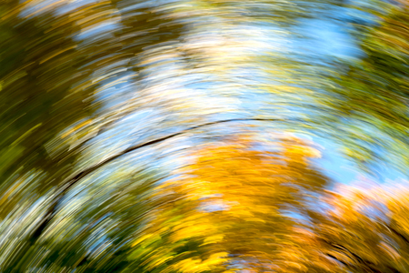 Blurred abstract background of autumn leaves on trees in motion. The concept of rotation in nature in autumn. 版權商用圖片