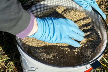 Angler gloves sifts the bait through the sieve into the bucket. The concept of preparing the bait to attract fish to the place of fishing. 免版税图像