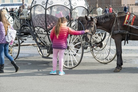 A girl in bright clothes strokes a horse riding in an antique coach of tourists on the Palace square of St. Petersburg, Russia, September, 2018. Redakční