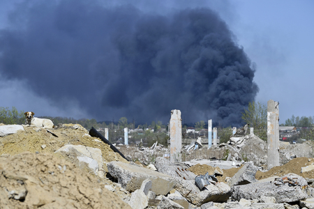 Concrete piles on the background of thick black smoke. In the photo there is a dog. Stock Photo