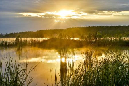 Morgennebel auf dem See in der Sonne.