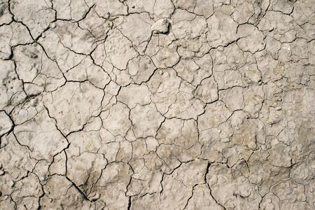 Dried clay earth with shaped cracks with a complete lack of vegetation in sunlight. Texture. 写真素材