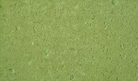 Organic texture of natural stone with prints of sea shells of muted gray-green pastel tone. Background.