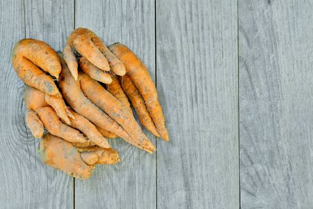 A pile of carrots of irregular shape on a gray wooden rustic background. Concept ugly vegetables.