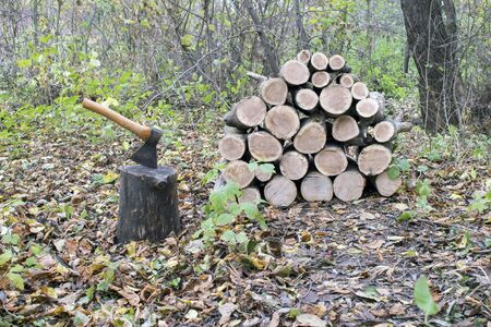 An axe stuck in a stump on the background of a woodpile for the fireplace of a country house. Background.