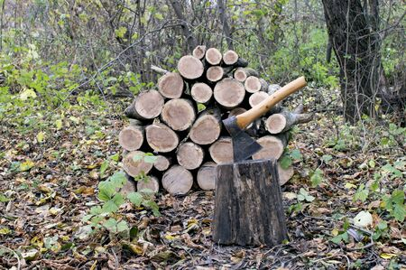 An axe stuck in a stump close-up against a pile of firewood for the fireplace, autumn trees and fallen leaves on the ground. Background. Banco de Imagens