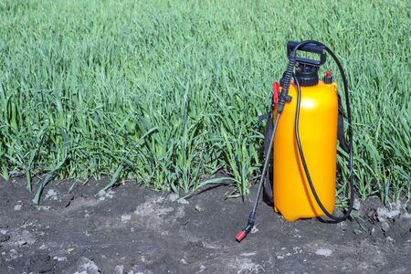 Sprayer with orange balloon and hose on a background of green shoots. Copy space. Background. Standard-Bild