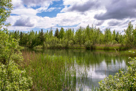 Forest lake with banks in the bright spring green of young birches against the blue sky with Cumulus clouds. Background.