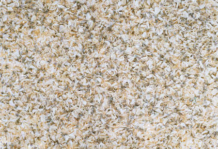 Organic texture of dried light petals with green seeds. Highlighted background