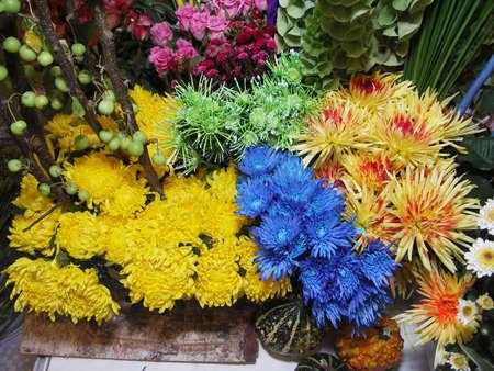 aster: Aster bouquet