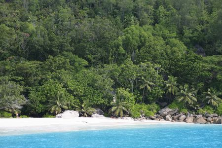 beach of silhouette island in seychelles indian ocean Banque d'images - 121743181