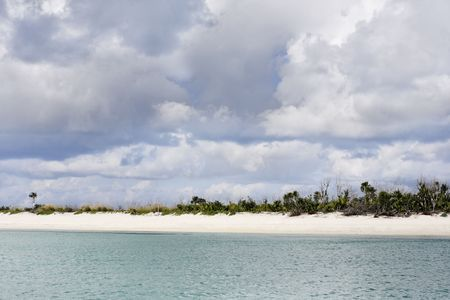 view of the beautiful white sand beach of cozumel island in yucatan mexico  免版税图像