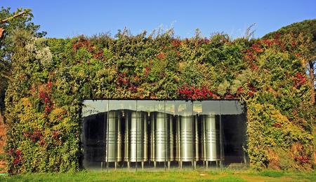 Fermenteur de vin dans le vignoble près de saint tropez sur la côte d'azur