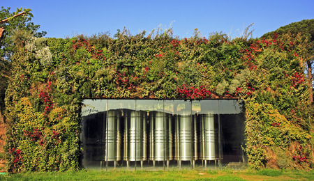 wine fermenter in vineyard near saint tropez on the french riviera Banco de Imagens - 121743595
