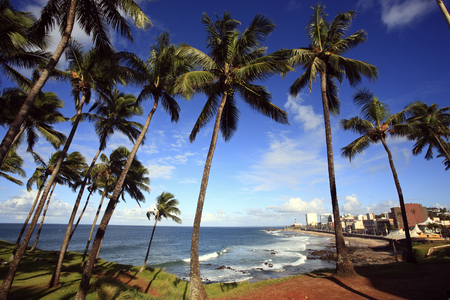 barra beach in the beautiful city of salvador in bahia state brazil Zdjęcie Seryjne - 121743821