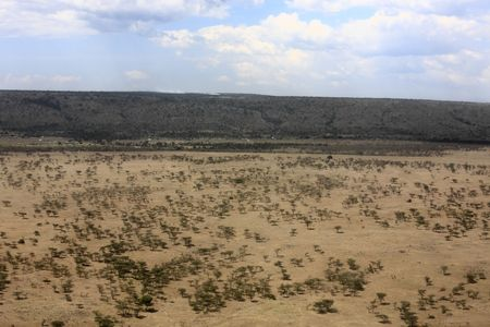 in the beautiful plains of the masai reserve in kenya africa Banque d'images - 121744496