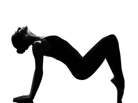 beautiful caucasian tall woman ballet dancer tiptoe pose full length on studio isolated white background Stock Photo - 9914576