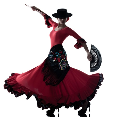 one woman gypsy flamenco dancing dancer on studio isolated white background Stock Photo - 13543187