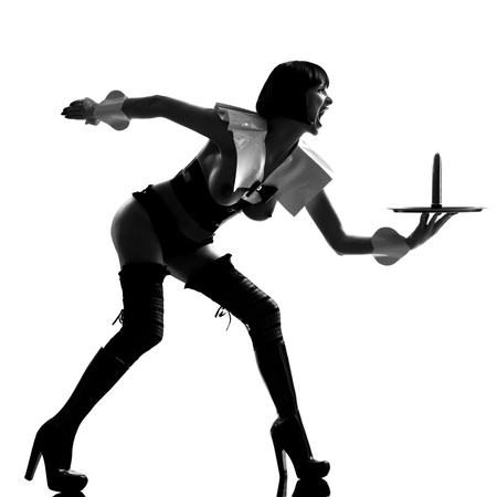 one sexy caucasian sexy woman  dress as a maid  with a dildo on a serving tray silhouette in studio isolated on white background Stock Photo - 13888515