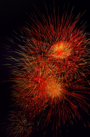 national day: beautiful fireworks during the night of national day paris france