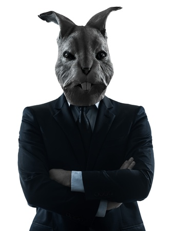 animal masks: one causasian man rabbit mask  portrait in silhouette studio isolated on white background