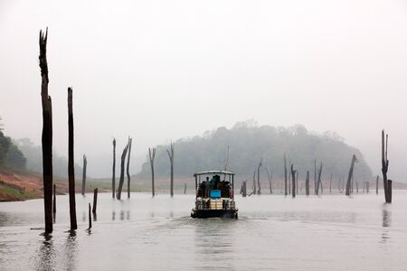 periyar: Periyar Lake Reserve in mumnar Kerala state india