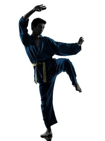 artes marciales: un hombre asi�tico joven el ejercicio de los artes marciales del karate vietvodao en el estudio de la silueta aislado en el fondo blanco Foto de archivo