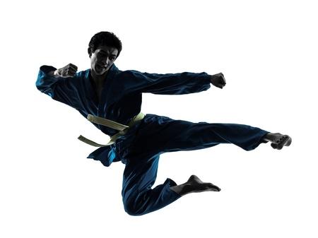 arte marcial: un hombre asi�tico ejercicio de karate artes marciales vietvodao en el estudio de la silueta aislado en el fondo blanco