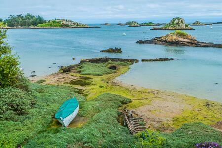ile de france: green alga Brehat island in brittany cotes d armor France
