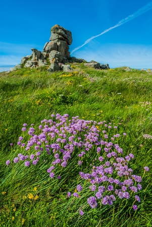 ile de france: Brehat island in brittany cotes d armor France