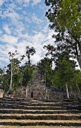 stone steps: view of the lost in the jungle mayan site of Coba in yucatan mexico Stock Photo