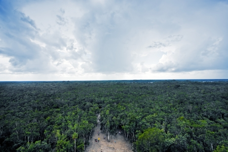 view of the lost in the jungle mayan site of Coba in yucatan mexico photo