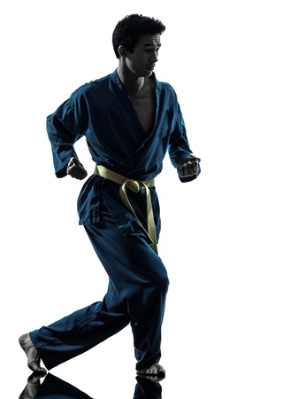 one asian young man exercising martial arts karate vietvodao in silhouette studio isolated on white background Stock Photo - 17419733