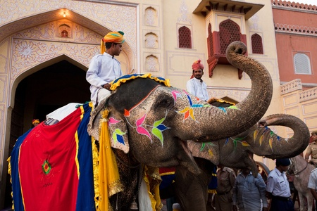 Jaipur, Rajasthan,India - March 29   people and elephants of the city are celebrating the gangaur festival one of the most important of the year march 29 2009 in jaipur,rajasthan,india