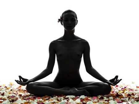 one beautiful asian woman naked sitting  with petal flowers  in silhouette studio isolated on white background photo