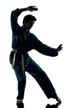 vietvodao: one asian young man exercising martial arts karate vietvodao in silhouette studio isolated on white background