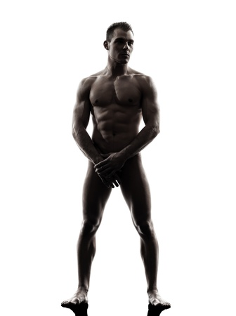 one caucasian handsome naked muscular man tanding full length in silhouette studio on white background Stock Photo - 20020132