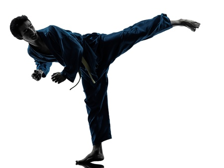 one asian young man exercising martial arts karate vietvodao in silhouette studio isolated on white background Stock Photo - 20011630