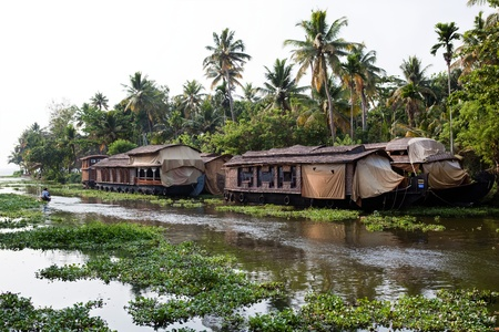 houseboat tour in the backwaters in Kerala state india photo