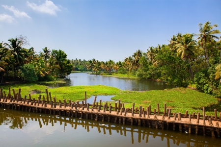 kerala culture: backwaters of cochin in Kerala state india