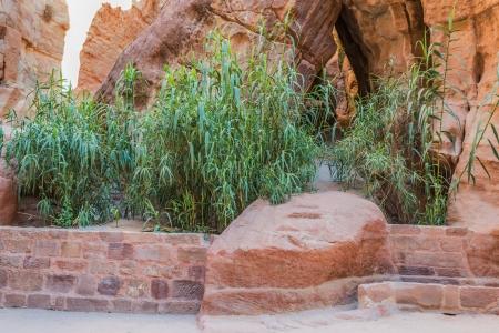 nabatean: the siq path in nabatean petra jordan middle east