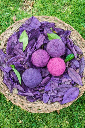 natural dyed wool yarn in the peruvian Andes at Cuzco Peru photo